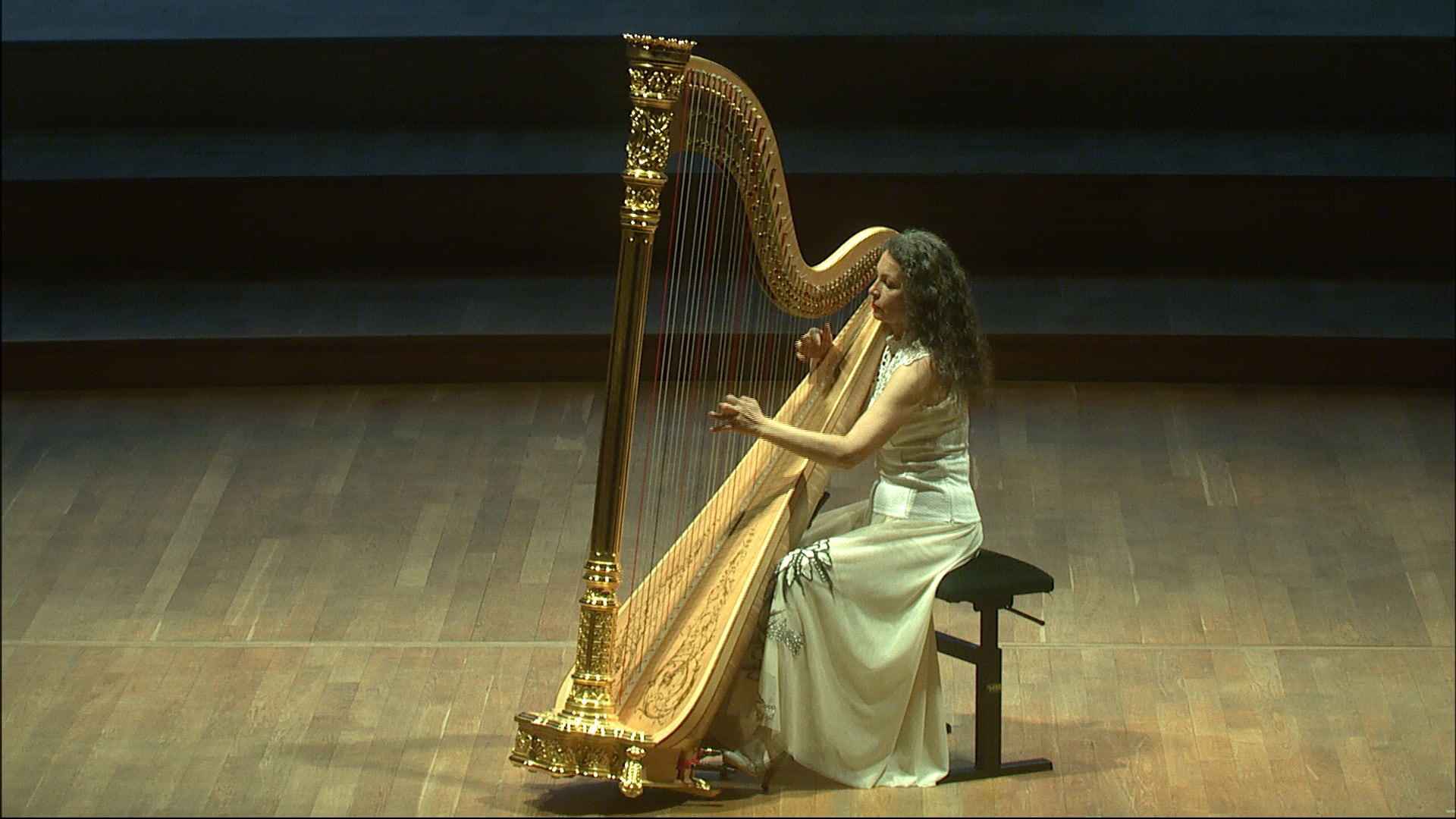 Koncert bez publika VIII